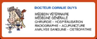 Vétérinaire Bruxelles